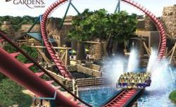 Busch-Gardens-Tampa-Bay-Admission-Ticket
