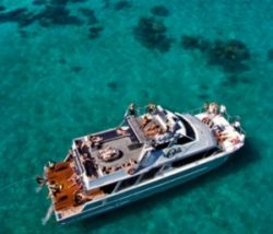 Great Barrier Reef Diving and Snorkelling Cruise from Cairns