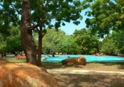 Elephant Reach Hotel - Pool