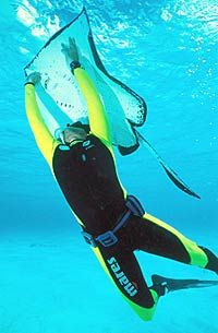 grand-cayman-scuba-diving-in-georgetown