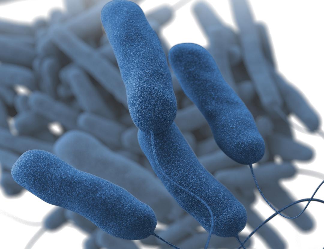 MI hospital investigating possible Legionnaires' disease outbreak