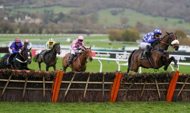 Cheltenham festival tips: Tuesday racing as Honeysuckle eyes Champion Hurdle glory