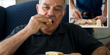 High cholesterol: The top three sandwich spreads to help lower cholesterol