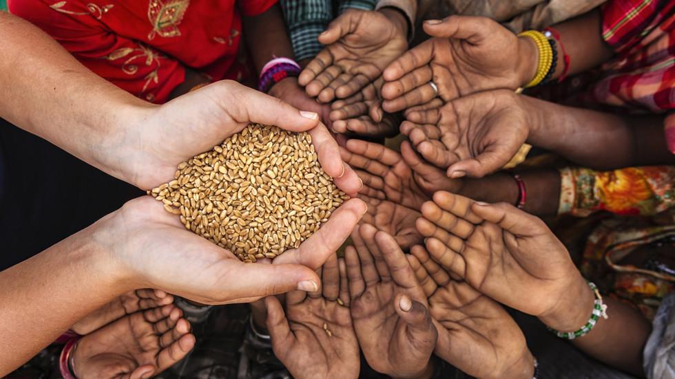 World facing unprecedented threat of food shortages, UN agency warns