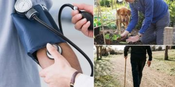 High blood pressure: Seven 'helpful' exercises to lower your risk of hypertension symptoms