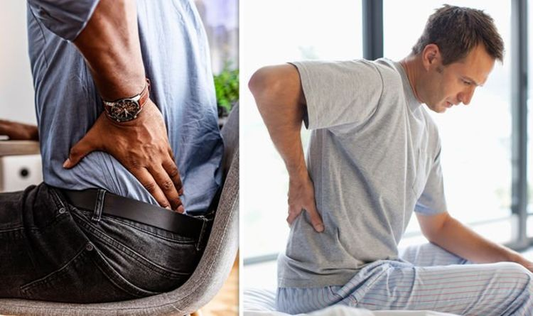 Back pain treatment: The correct posture needed to not irritate the back muscles