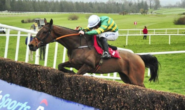 Grand National horse dies: The Long Mile put down in sixth death in last 10 years