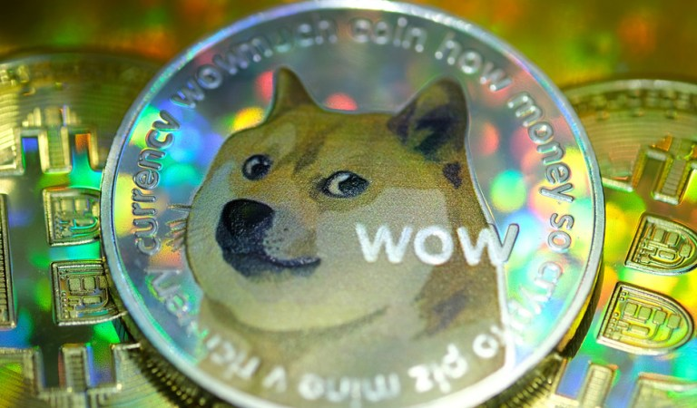 'Barking at the Moon': Dogecoin skyrockets 300% in a week, sparking bubble fears