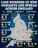 Map reveals England's cases of Indian, South African and Brazilian variants