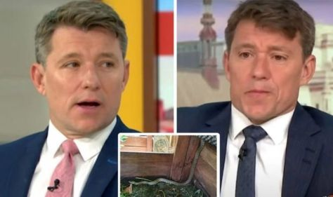 Ben Shephard: GMB Star appeals to help in the midst of a '6ft snake discovery' in compost