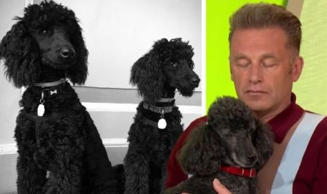 Chris Packham wants his ashes to be mixed with that of his two beloved dogs after he dies