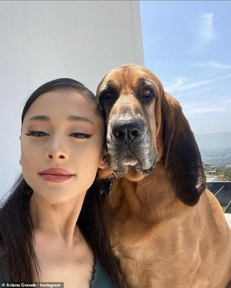 Updating her fans: On Monday the singer-songwriter shared a sweet side by side photo of herself with a brown dog