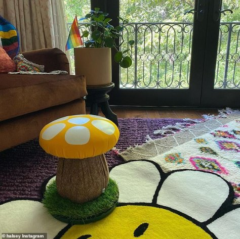Bright and happy: Their living room featured a flower rug, a seat shaped like a mushroom and rainbow flag in a potted plant
