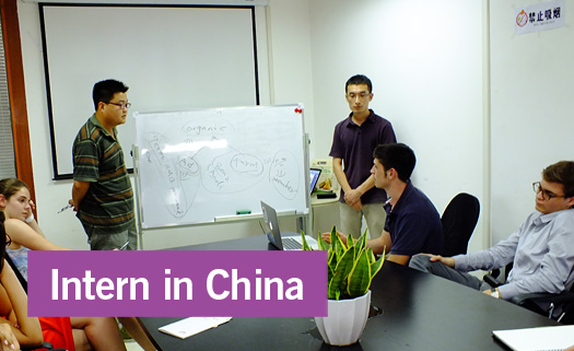 Internship Opportunities in China