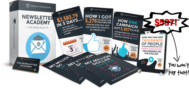 The Newsletter Academy review price