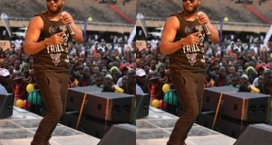 Bebe Cool Displayed The Graphical Impression