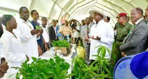 Museveni at Makerere University
