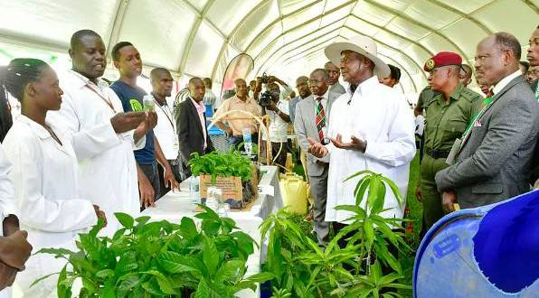 Museveni at Makerere University