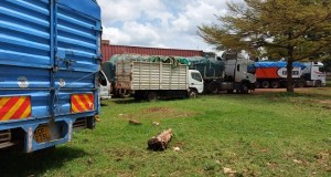 Kenya Impounds 39 Trucks Full Of Unchecked Maize From Uganda