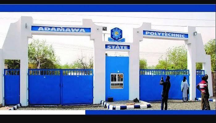 Adamawa Poly to Run Degree Programmes  Seven Fields