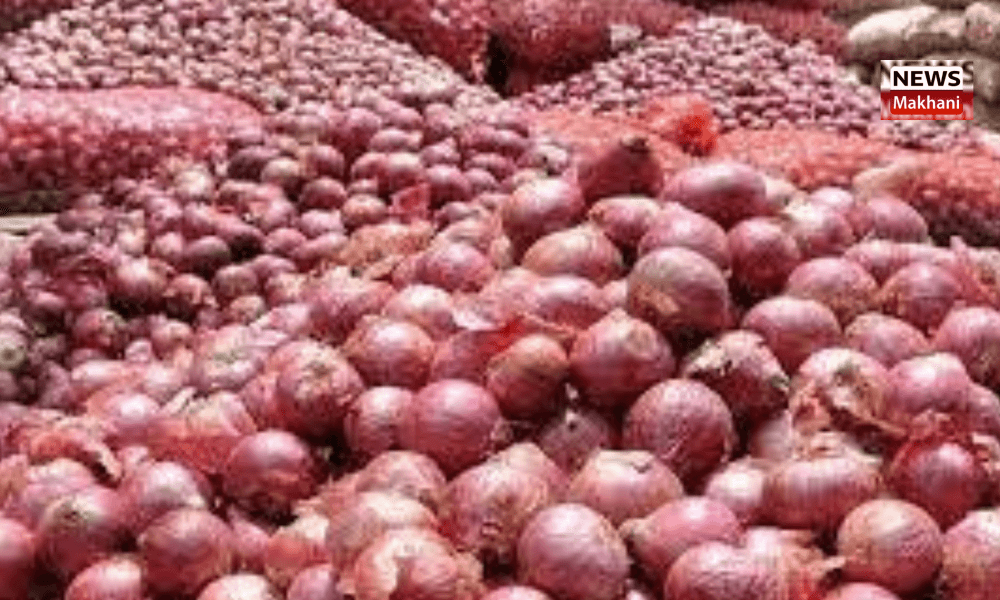 Government imposes stock limit on onions to curb price rise