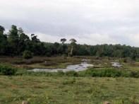 River Kapila
