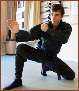Ninja is best for health