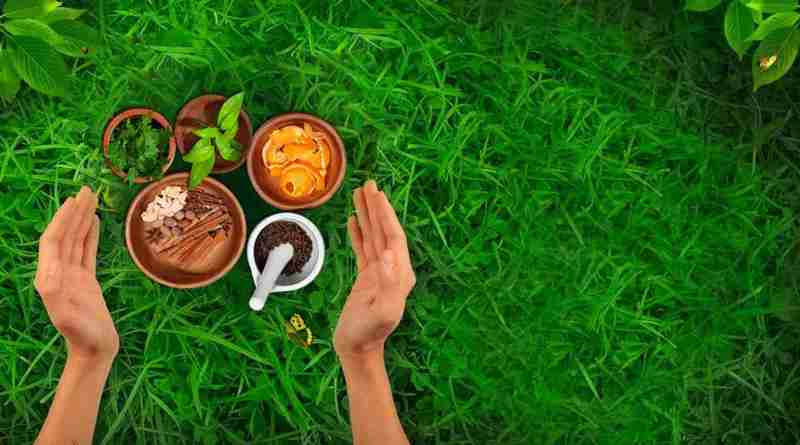 Ayurvedic Training in India