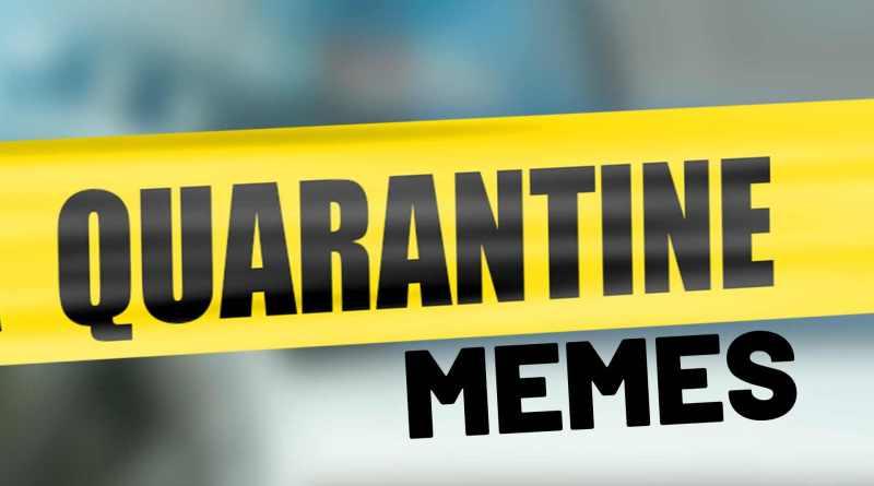 quarantine memes and viral videos