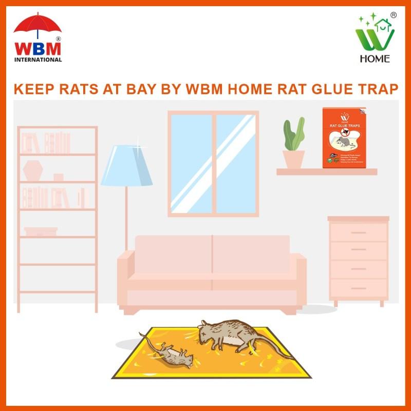 Keep rats at bay by WBM home Rat glue traps