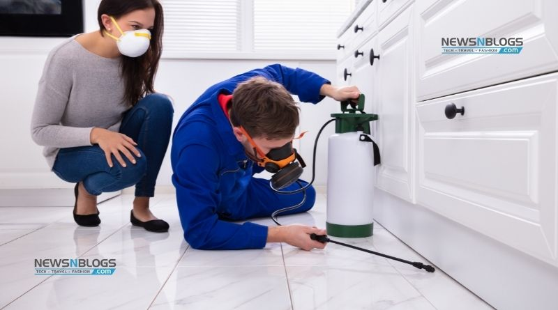 Pest Control Services Why Is It Needed for a healthy life