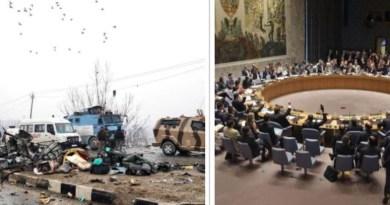 संयुक्त राष्ट्र सुरक्षा परिषद के सदस्य देशों ने पुलवामा आतंकी हमले की कड़े शब्दों में निंदा की है।