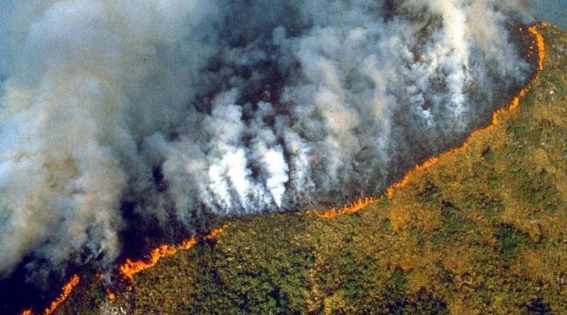 अमेजन के जंगलों में पिछले 10 दिनों से भीषण आग लगी है। आग बुझने का नाम नहीं ले रही है और ये पूरी दुनिया के लिए चिंता का विषय बनी हुई है।