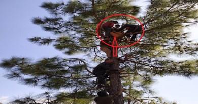 उत्तराखंड के पौड़ी गढ़वाल के रिखनीखाल थाना इलाके में पेड़ पर चढ़ी महिला को करंट लग गया, जिससे वो घायल हो गई।