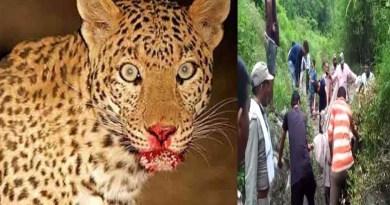 उत्तराखंड: 'इंसानी खून' का प्यासा हो चुका आदमखोर गुलदार ढेर! खौफजदा ग्रामीणों ने उठाए सवाल