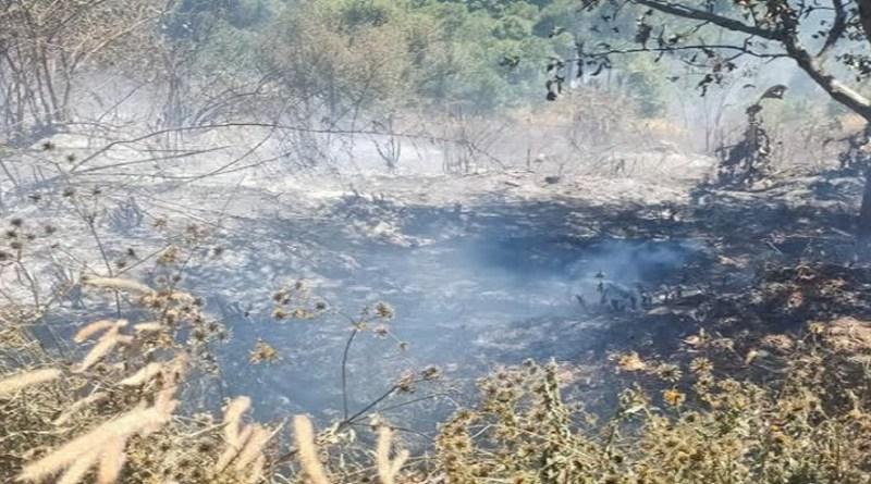 उत्तरकाशी के पुरोला तहसील के खिलाड़ी गांव के पास जंगलों में आग का तांडव देखने को मिला है। भीषण आग से ग्रामीणों की कई हेक्टेयर जमीन पर उगी हरी घास को नुकसान पहुंचा है।