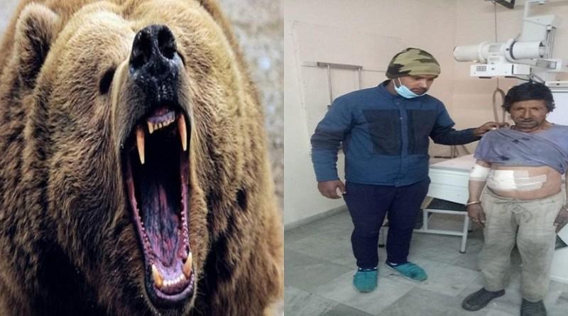 उत्तरकाशी में एक बार फिर भालू का आतंक देखने को मिला है। शुक्रवार दोपर को हुर्रि गांव में एक व्यक्ति पर भालू ने हमला कर दिया।