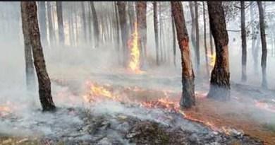 अल्मोड़ा के जंगलों में लगी आग बुधवार सुबह बेस अस्पताल के पास पहुंच गई है। आग की लपटें सड़क के किनारे स्थित कूड़े के ढेर तक पहुंचने से इलाके में हड़कंप मच गया है।