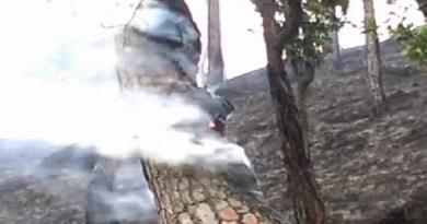 पिथौरागढ़ के जंगलों में इन दिनों आग धधक रही है। आग लगने की वजह से वन संपदा को भारी नुकसान हो रहा है।