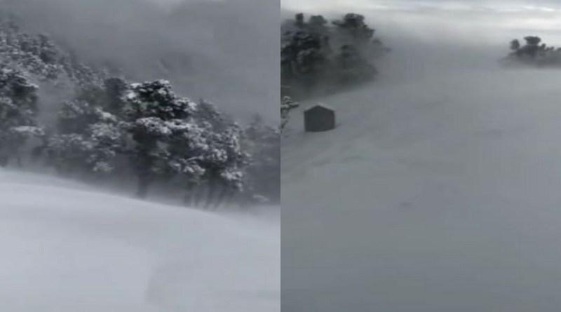 उत्तराखंड के पहाड़ी इलाकों में जबरदस्त बर्फबारी हो रही है। ब्रहमताल में भारी बर्फबारी के बाद पूरा इलाके में सफेद चादर सी बिछ गई है। बर्फबारी में चल रही है लोगों की मुसीबतें और बढ़ा रहा है।