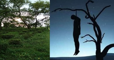 देहरादून: चाय बागान में पेड़ से लटका मिला किशोर का क्षत-विक्षत शव, मौके पर पहुंची पुलिस के भी उड़े होश!