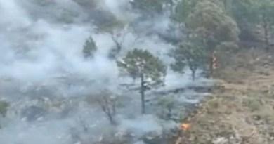 चमोली के जंगलों में आए दिन आग लगने की घटना सामने आती रहती है। बदरीनाथ के जंगलों में अबतक आग लगने की 61 घटनाएं हो चुकी हैं। जिसकी वजह से अब तक 47.25 हेक्टेयर जंगल का इलाका जलकर राख हो गया है।