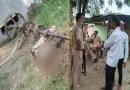 हरिद्वार में दर्दनाक हादसा! आटा चक्की के पट्टे में फंसकर दो बच्चों की मौत, परिवार में पसरा मातम