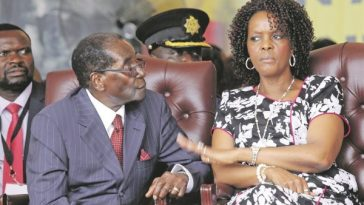 Grace Mugabe, Robert Mugabe, Divorce, Zimbabwe