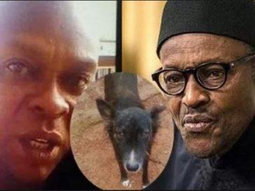 Joachim Iroko, Dog, Buhari, Discharged