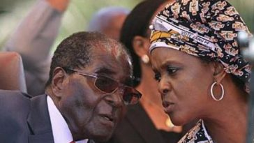 Mugabe, Grace, Successor, Politics, Zimbabwe