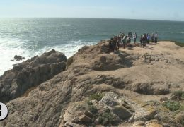Whale Watchers Gather Along Sonoma Coast