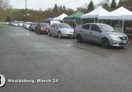 Healdsburg Driveup Food Distribution Overwhelmed