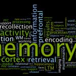 PCのメモリを2GBから4GBに増設したら動作サクサクでワロタwwwwwwwww