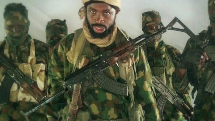 Boko Haram Leader Shekau Is Not Dead